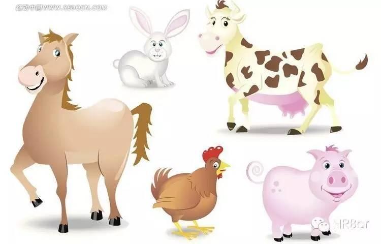 小测试-选不同的小动物测出个人特质